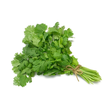 Fresh Coriander Bunch Each