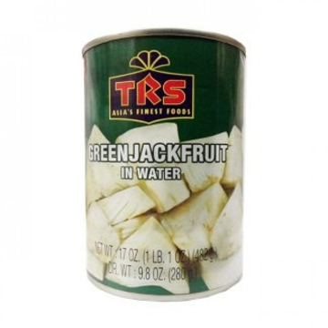 TRS Green Jackfruit In Water 482g