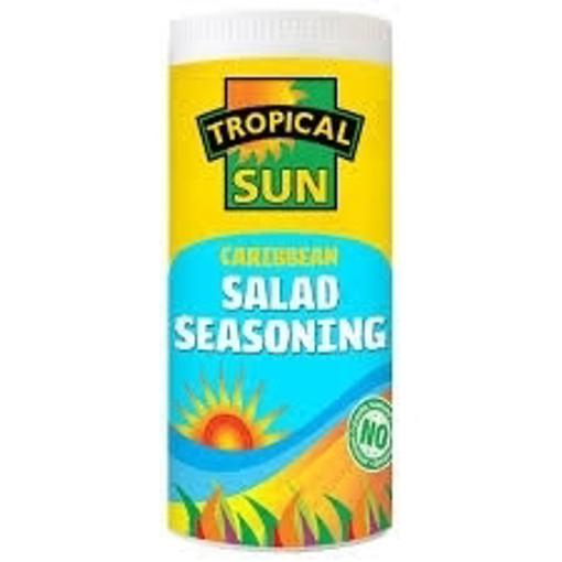 TS Caribbean Salad Seasoning 100g