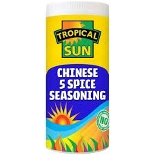 Tropical Sun Chinese 5 Spices Seasoning 100g