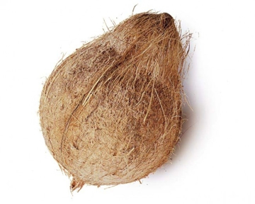 Picture of Brown Coconut Each